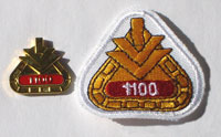 Picture of the pin and patch for 1,100 Events