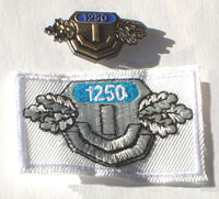 Picture of the pin and patch for 1,250 Events