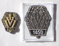 Picture of the pin and patch for 1,450 Events