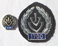 Picture of the pin and patch for 1,700 Events