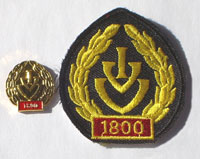 Picture of the pin and patch for 1800 Events