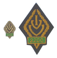 Picture of the pin and patch for 2200 Events