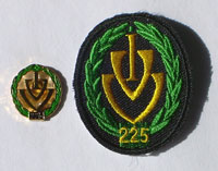 Picture of the pin and patch for 225 Events