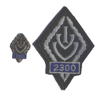 Picture of the pin and patch for 2300 Events