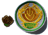 Picture of the pin and patch for 2500 Events