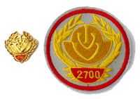 Picture of the pin and patch for 2700 Events