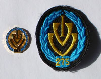 Picture of the pin and patch for 275 Events