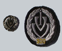 Picture of the pin and patch for 300 Events