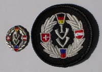 Picture of the pin and patch for 30 Events
