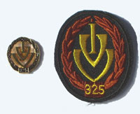 Picture of the pin and patch for 325 Events