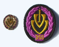 Picture of the pin and patch for 350 Events