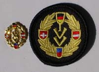 Picture of the pin and patch for 50 Events