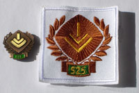 Picture of the pin and patch for 525 Events