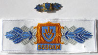 Picture of the pin and patch for 5,500 Kilometers