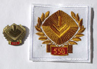 Picture of the pin and patch for 550 Events