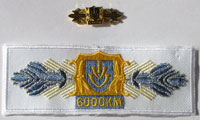 Picture of the pin and patch for 6,000 Kilometers