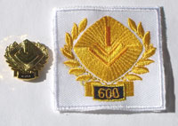 Picture of the pin and patch for 600 Events