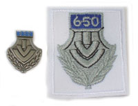 Picture of the pin and patch for 650 Events