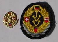 Picture of the pin and patch for 75 Events