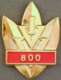 Picture of the pin for 800 Events