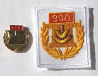 Picture of the pin and patch for 900 Events
