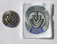 Picture of the pin and patch for 950 Events