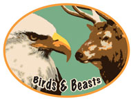 Picture of the Birds & Beasts Award
